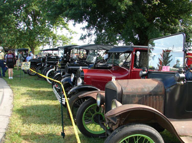 Ford Model T's