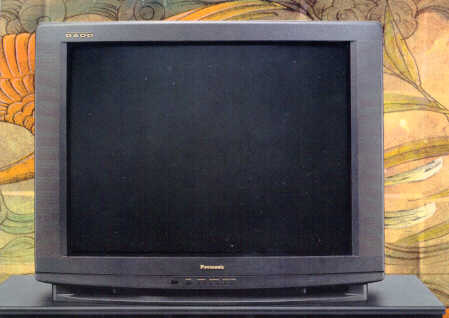 Panasonic's GAOO TV